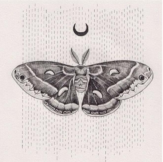 halfmoonbutterfly