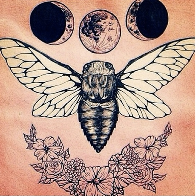 moonbutterfly